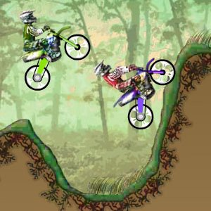 Dirt Bike Championchip